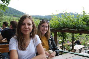 Dinner in the Vineyards